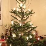 Türchen Nummer 18 – Der Tannenbaum