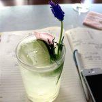 Lavendel Gin Fizz – Lieblingscocktail für den Sommer